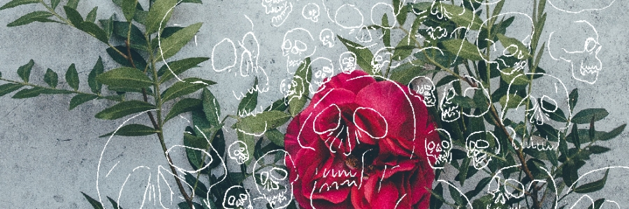 A flower and leaves against a marble tomb, over layed with line drawings of skulls