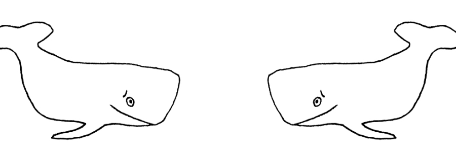 A line drawing of two whales. The whales have a sheepish expresssion.