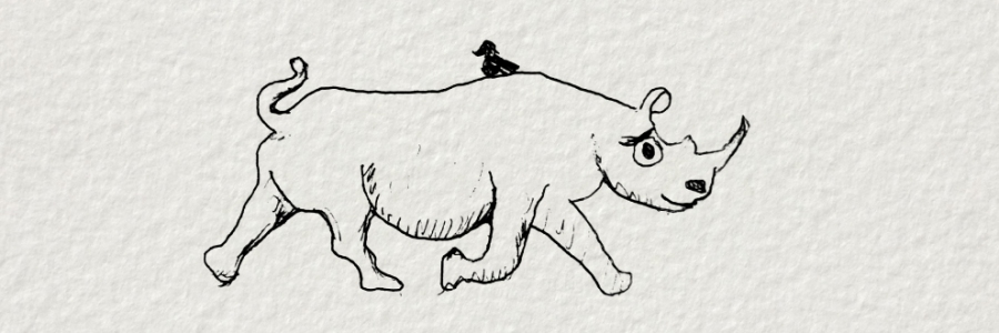 A black and white sketch of a cheerful Rhino in mid trot. A small bird sits on his back.